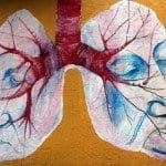 Respiratory Quotient and the Measurement of Metabolism