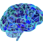 Hypothalamus and its Role in Animal Behavior